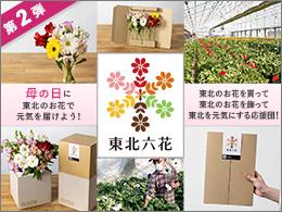 母の日に東北のお花で元気を届けよう【東北六花】