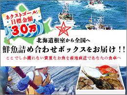 根室のお魚レスキューBOXをお届け!鮮魚ボックスの応援購入企画  ここでしか獲れない貴重なお魚を産地直送であなたの食卓へ